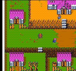 Gargoyle's Quest II - The Demon Darkness - Screenshot 5/5