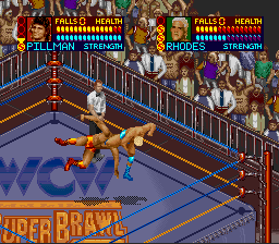 WCW Super Brawl Wrestling - Screenshot 2/4