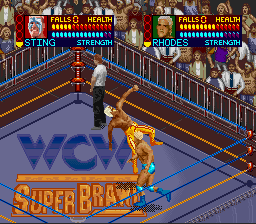 WCW Super Brawl Wrestling - Screenshot 4/4